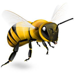Bee Removal Las Vegas, No Kill Bee Relocation & Beehive Removal